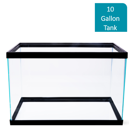 Aqua Culture 10-Gallon Glass Aquarium (20 Gallon Long Fish Tank)
