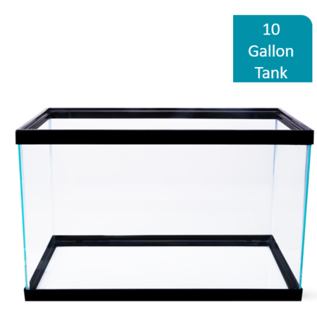 Aqua Culture 10-Gallon Glass - Aquarium Fish Tank Display