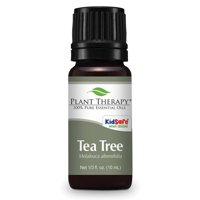 Plant Therapy Tea Tree Melaleuca Essential Oil 10 mL (1/3 fl. oz.) 100% Pure, Undiluted, Therapeutic Grade