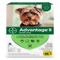 Advantage II Flea Treatment for Small Dogs, 6 Monthly Treatments
