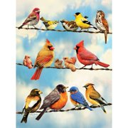 Birds on a Wire 500 Piece Puzzle,  Puzzles by Go! Games