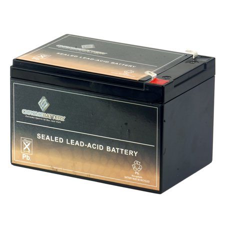 12V 12AH Sealed Lead Acid Battery for Hoveround Activa Wheelchair