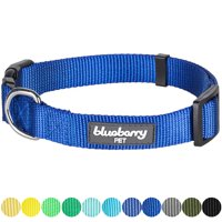 "Blueberry Pet Classic Nylon Adjustable Dog Collar Made for Last, Royal Blue, Medium, Neck 14.5""-20"""