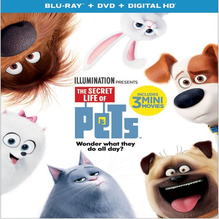 The Secret Life Of Pets (Blu-ray + DVD + Digital HD) (Children's Halloween Movies 2017)
