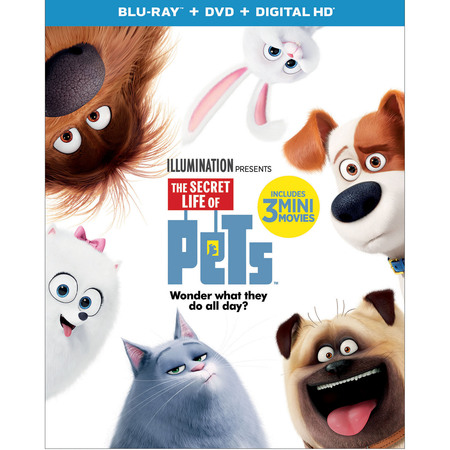 The Secret Life Of Pets (Blu-ray + DVD + Digital
