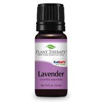 Plant Therapy Lavender Essential Oil 10 mL (1/3 fl. oz.) 100% Pure, Undiluted, Therapeutic Grade