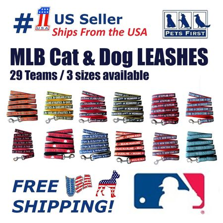 Pets First MLB Houston Astros Cats and Dogs Durable Pet Leash, (Aspen Pet Cat Leash)