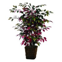 Vickerman 4' Artificial Capensia Bush in Square Willow