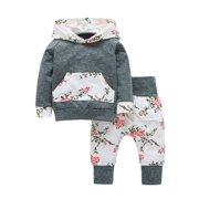 92462483f487 Toddler Girl Hoodies