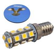 DC Light Bulbs