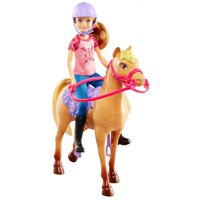 Barbie Camping Fun Stacie Doll & Horse Play Set