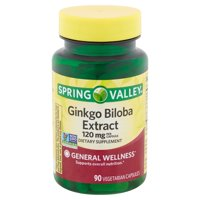 Spring Valley Ginkgo Biloba Extract Vegetarian Capsules, 120 mg, 90 count