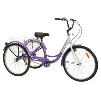 Royal London Adult Tricycle 3 Wheeled Trike Bicycle with Wire Shopping Basket