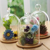 3 Pattern Clear Glass Display Jar Cloche Bell Dome Flower Preserve Vase + Wooden Base For Craft Ornaments Floral Decorations