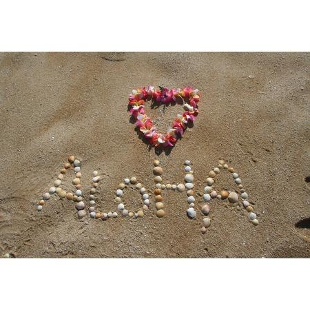 LAMINATED POSTER Vacation Sand Tropical Beach Aloha Summer Hawaii Poster Print 24 x