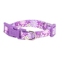 Vibrant Life Fashion Purple Floral Dog Collar, X-Small, 6-9 in, 3/8 in