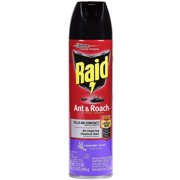 Raid Ant & Roach Killer, Lavender Scent, 17.5 oz