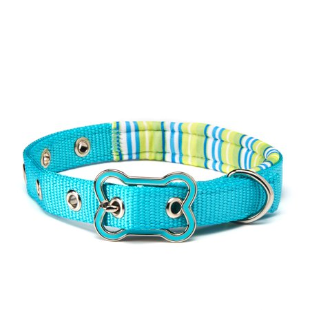 Vibrant Life Teal Striped Comfort Padded Dog Collar, Small, 8-14 in, 3/8 in - Mens 5 Eye Padded Collar