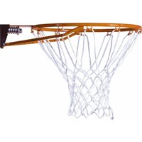 Lifetime Slam-it Mounted Basketball Rim and Net, 5820