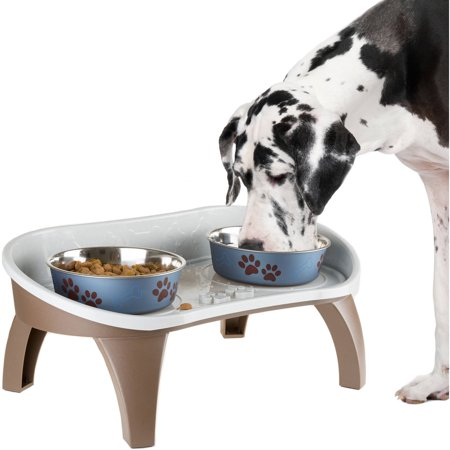 Elevated Feed - Elevated Pet Feeding Tray with splash guard and non-skid feet 21in x 11in x 8.5in by PETMAKER
