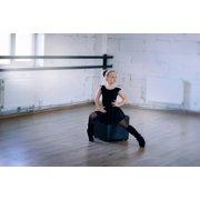 ballet dancer posters