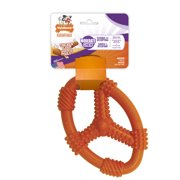 Nylabone Fun 'N Fit Chicken Flavor Medium Moderate Dog Chew Toy, 1 Count