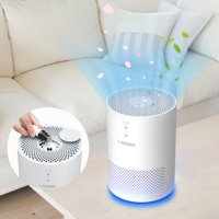 LANGRIA Air Purifier with True Hepa Filter, Air Purifier Odor Allergies Eliminator for Home, Smokers, Smoke, Dust, Mold and Pets, Air Cleaner with Night Light