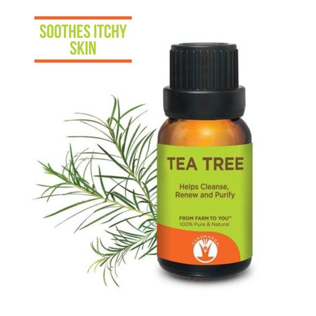 Gurunanda Tea Tree Essential Oil, 0.5 (Tea Home Fragrance Oil)
