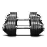 Yes4All 105 lb Adjustable Dumbbell Weight Set - Cast Iron Dumbbell (a Pair)
