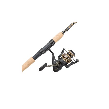 Penn Battle II Spinning Reel and Fishing Rod