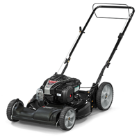 Murray 21'' Front-Wheel Drive Self Propelled Gas Lawn Mower with Briggs & Stratton Engine, Side Discharge, Mulching