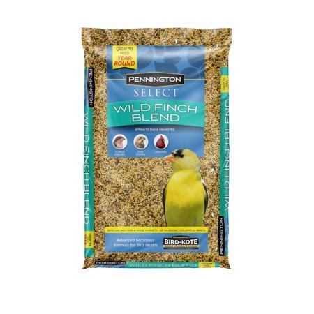 Finch Formula Bird Food (Pennington Select Wild Finch Blend, Wild Bird Seed Feed, 10 Pounds )