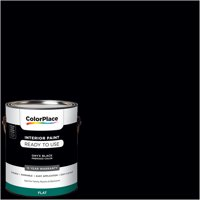 ColorPlace Pre Mixed Ready To Use, Interior Paint, Onyx Black, Flat Finish, 1 Gallon