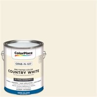 ColorPlace Pre Mixed Ready To Use, Interior Paint, White, Semi-Gloss Finish, 1 Gallon