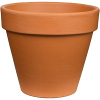 Pennington Terra Cotta Clay Pot/Planter, 12 inch