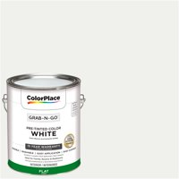 ColorPlace Pre Mixed Ready To Use, Interior Paint, White, Flat Finish, 1 Gallon