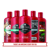 Old Spice Swagger 2-in-1 Shampoo and Conditioner 25.3 Fl Oz