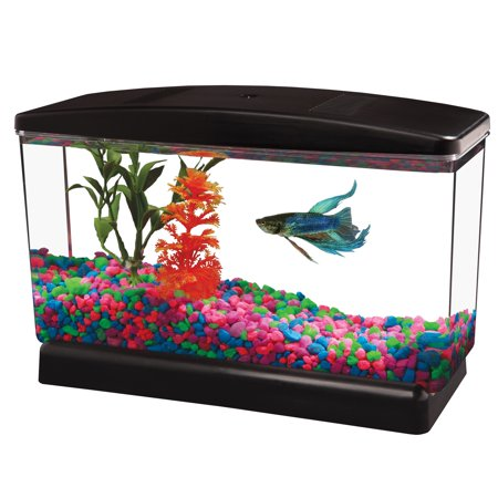 Aqua Culture 0.5-Gallon Fish Tank ()