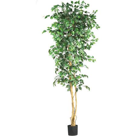 Nearly Natural 7-ft. Artificial Ficus Silk Tree, (5 Schefflera Silk Tree)