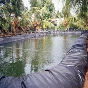 Durable Fish Pond Liner Gardens Patio Pools Pvc Membrane Reinforced Landscaping Today Special Offer