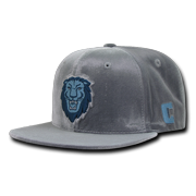 NCAA Columbia University Lions Flat Bill Velvet Snapback Baseball Caps Hats 4e45ccce1730