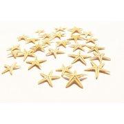 Set of 100 Tiny Mini Starfish - Philippine Tan Flat Sea Stars (1/2