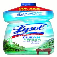(2 Pack) Lysol Clean & Fresh Multi-Surface Cleaner, Cool Adirondack Air, 48oz