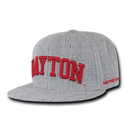 25c450237b4 Dayton Flyers Game Day Fitted Hat (Gray)