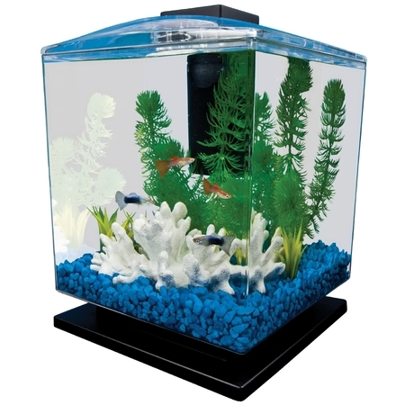 Tetra 1.5-Gallon Cube Aquarium Starter Kit ()