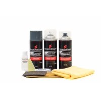Automotive Spray Paint for Hyundai Elantra S2R (Red Allure Pearl) Spray Paint Kit by Scratchwizard