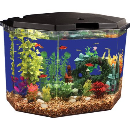 Aquarium Lighted Fish Tank - Aqua Culture 6.5-Gallon Aquarium Starter Kit with LED Lighting, Semi-Hex