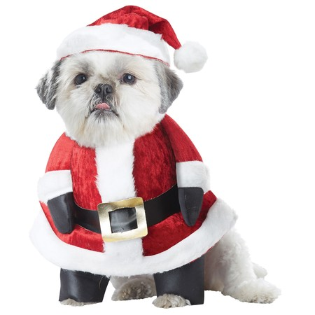 Santa Paws Pet Costume](Ladies Santa Costume)