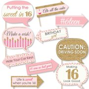 6c5d6861305 Funny Sweet 16 - 16th Birthday Party Photo Booth Props Kit - 10 Count