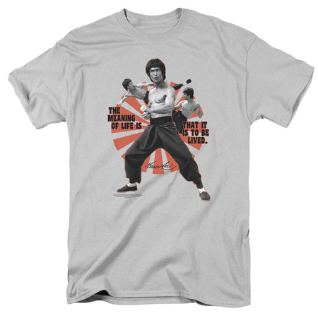 Bruce Jenner Halloween (Bruce Lee/Meaning Of Life   S/S Adult 18/1   Silver    )